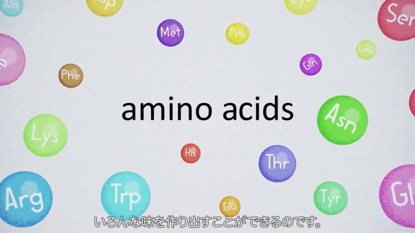 Video : How amino acids are important for human life