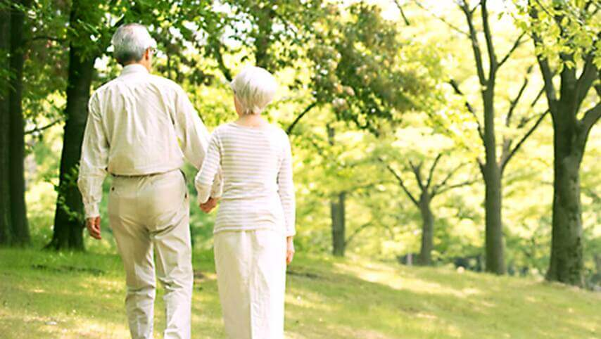 Amino Acids For Healthy Aging