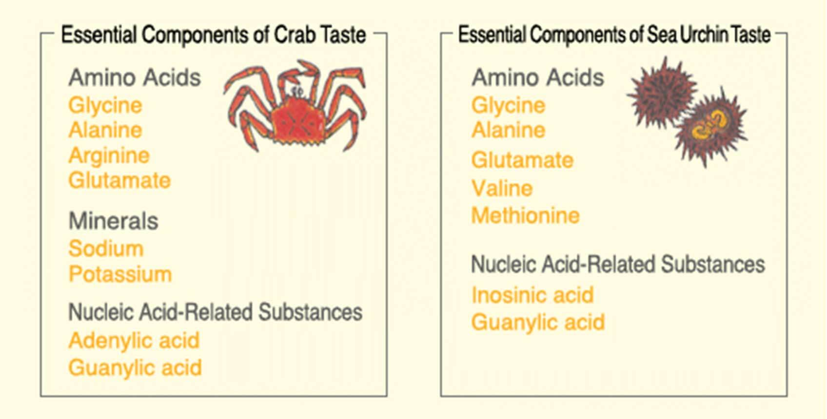 Essential Components Of Crab And Sea Food Taste