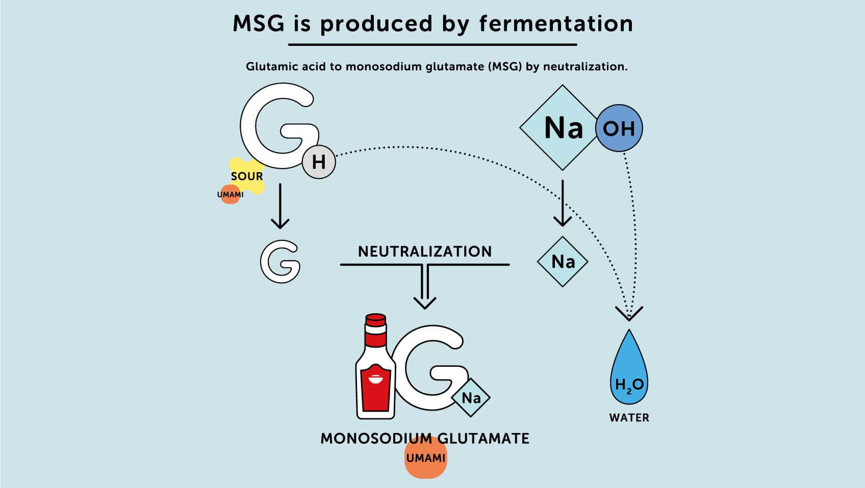 Msg Is Produced By Fermentation