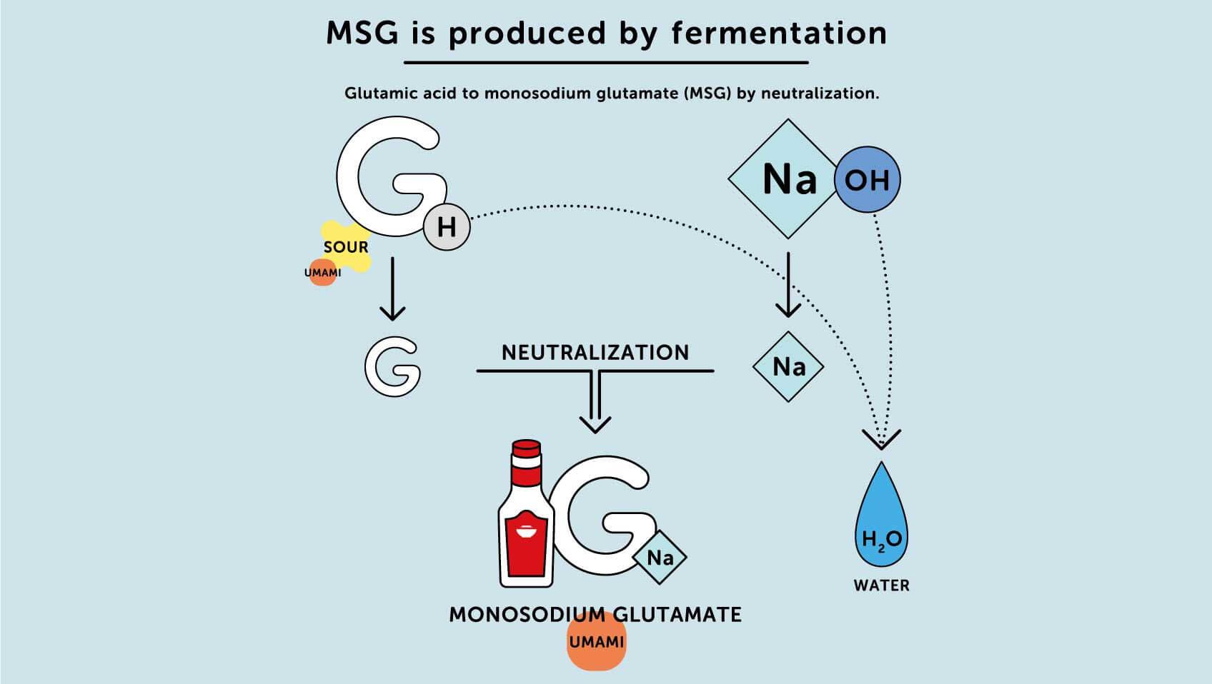 يتم إنتاج MSG عن طريق التخمير
